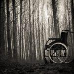 森の中の車椅子のイメージ画像
